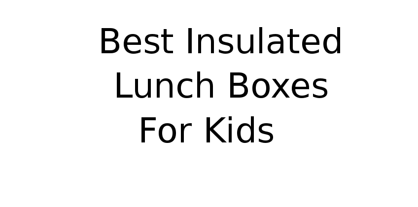 Best insulated lunch boxes for kids